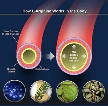 Biomanix Penis Capsule